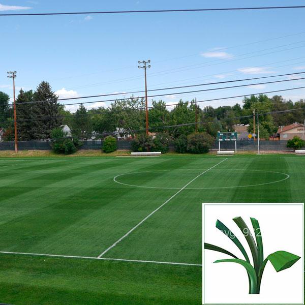 искусственный газон для футбола, модель: A6 50 4 16 ZD 13000